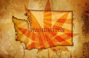 washington medical marijuana