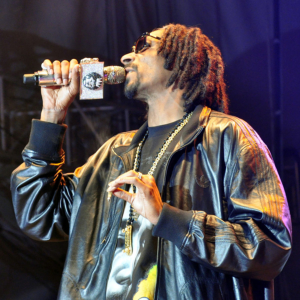 Summerjam_20130705_Snoop_Lion_DSC_0304_by_Emha