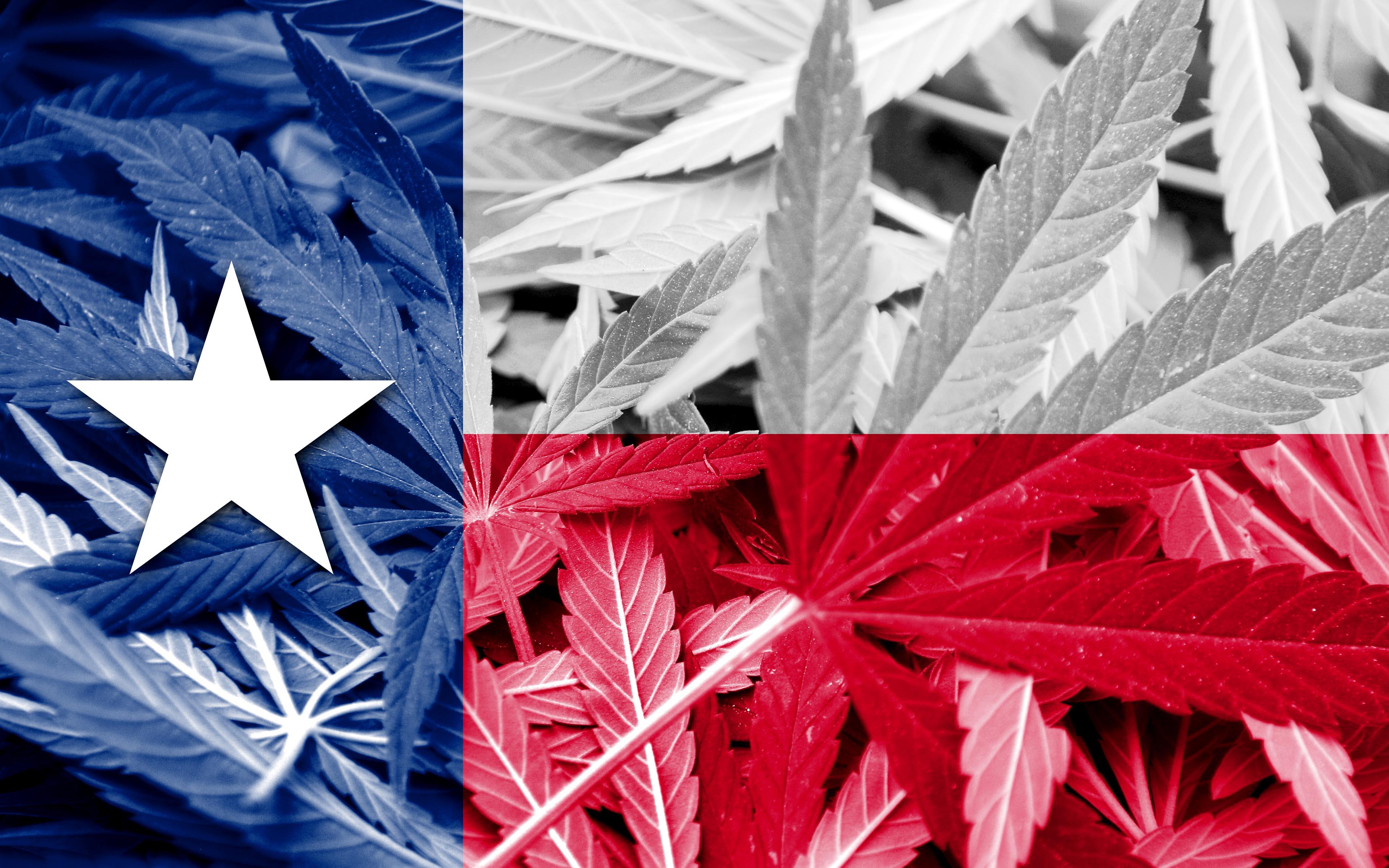 Texan Marijuana Supporters Demand Reform in 2017