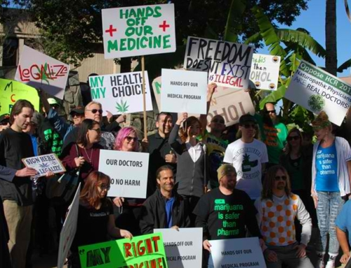 Arizona Marijuana Supporters Joined Million Marijuana March in Phoenix