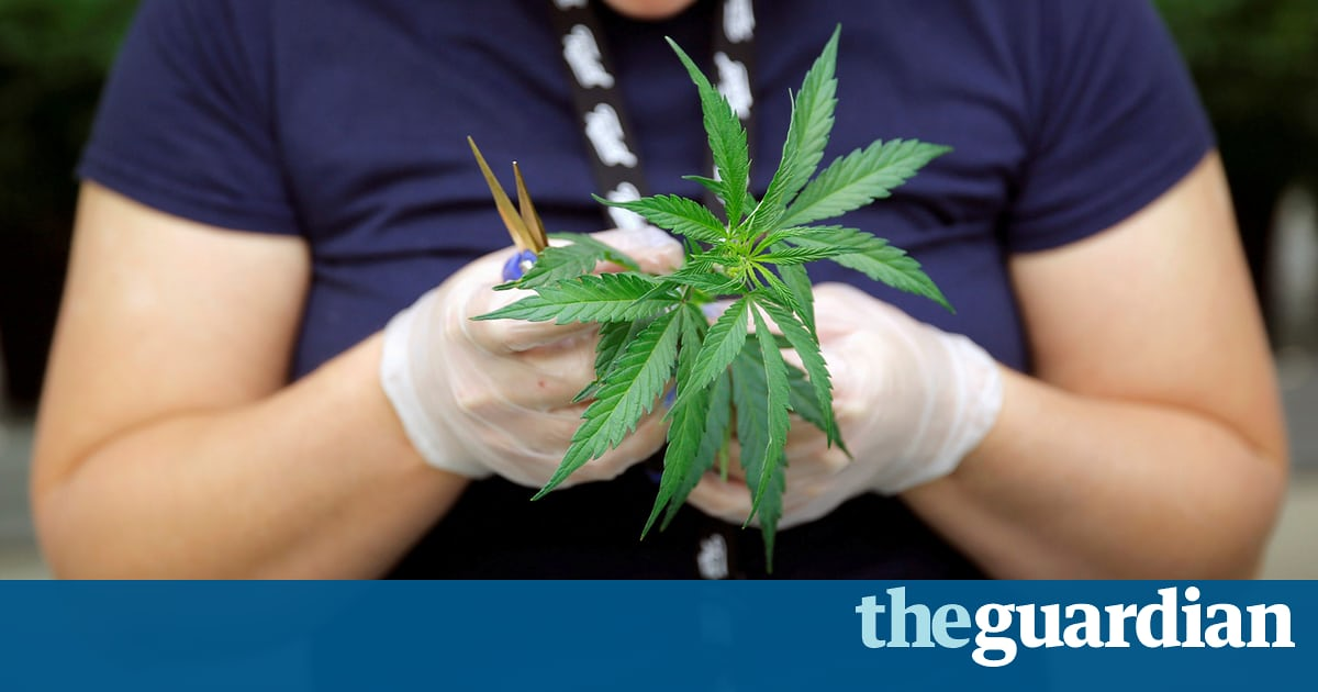 Why federal cannabis crackdown may be a blessing in disguise for legal weed