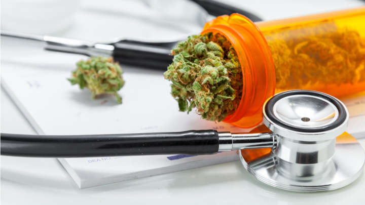 Medical Marijuana Should Not Be More Strictly Controlled, Says The World Health Organization