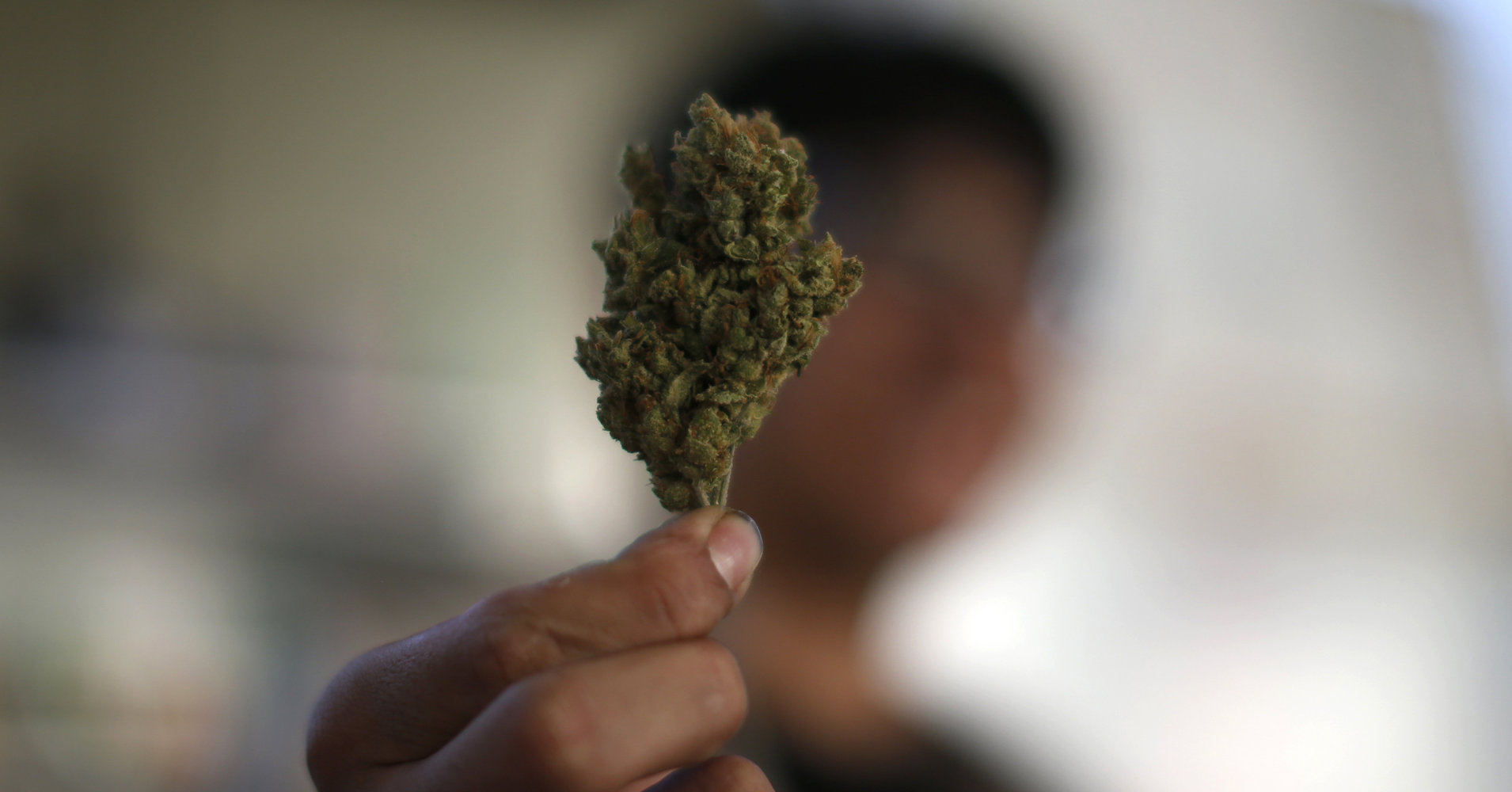 Los Angeles Is Set To Become The Largest U.S. City With Legal Marijuana