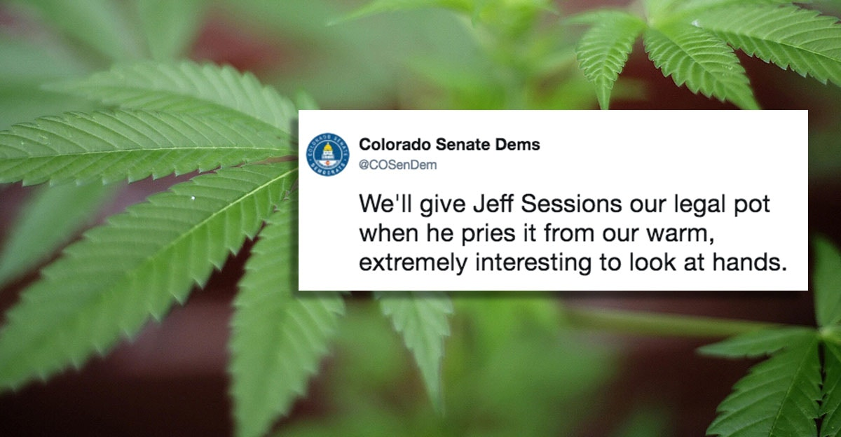 Colorado Senate Dems make a hilariously great case for legal pot.