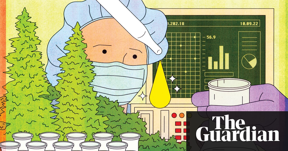 What is CBD? The 'miracle' cannabis compound that doesn't get you high