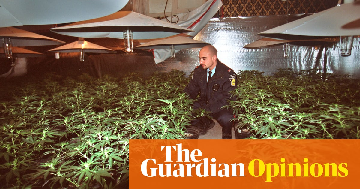I served 20 years for cannabis. Now the police are cashing in on it |  Rosie Rowbotham